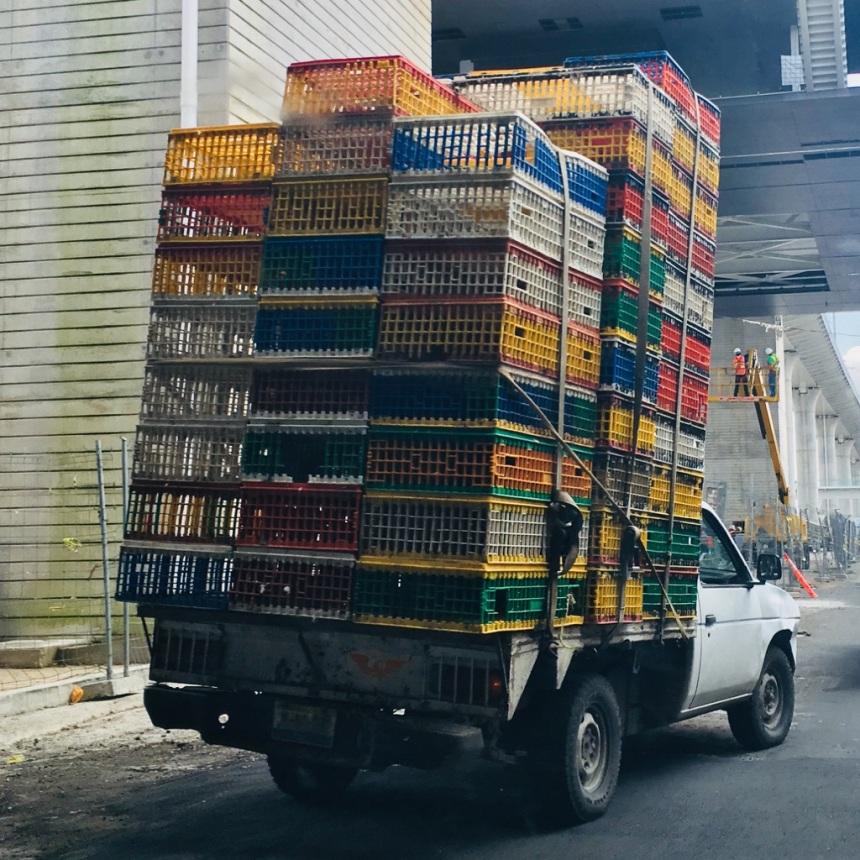 Wacales en movimiento, atado de wacales siendo transportados en la ciudad de Guadalajara, Jalisco, 2018